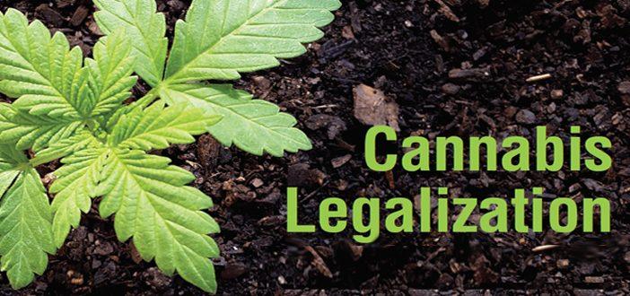 Cannabis and Manitoba